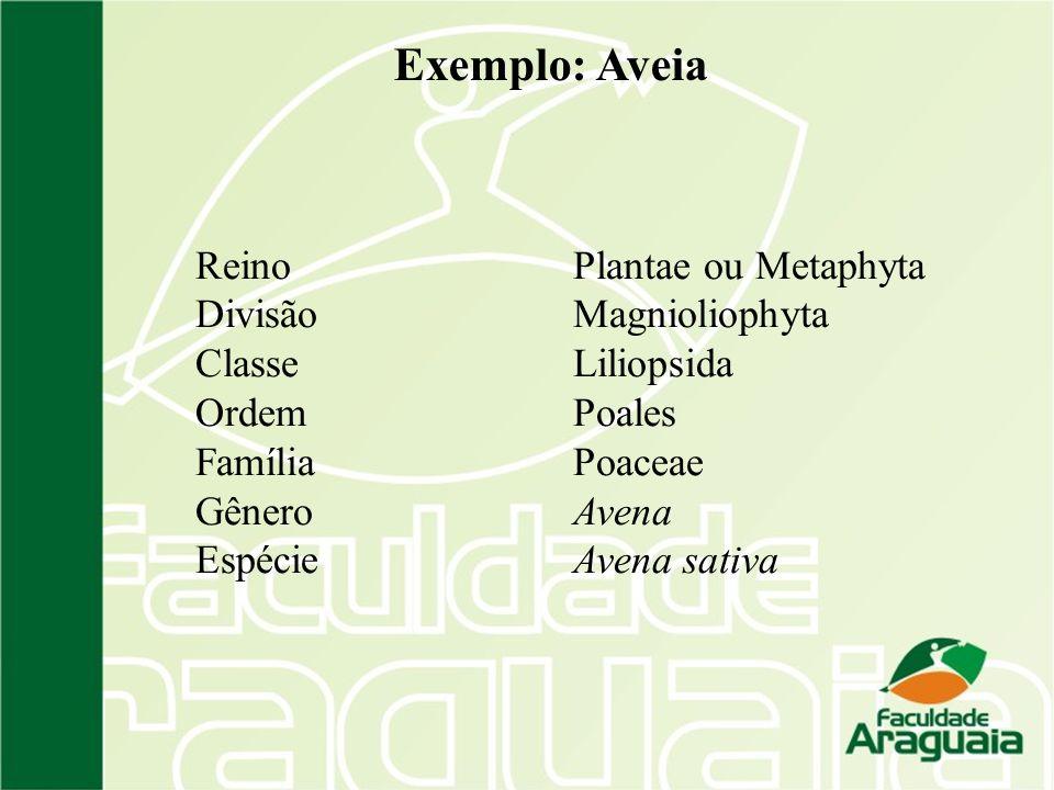 Os organismos estão divididos em 6 reinos: Archaea Eubacteria Fungi Plantae (Metaphyta) Protista Animalia (Metazoa) Domínio Eukarya ou Eukaryota Domínio Prokarya ou Prokaryota