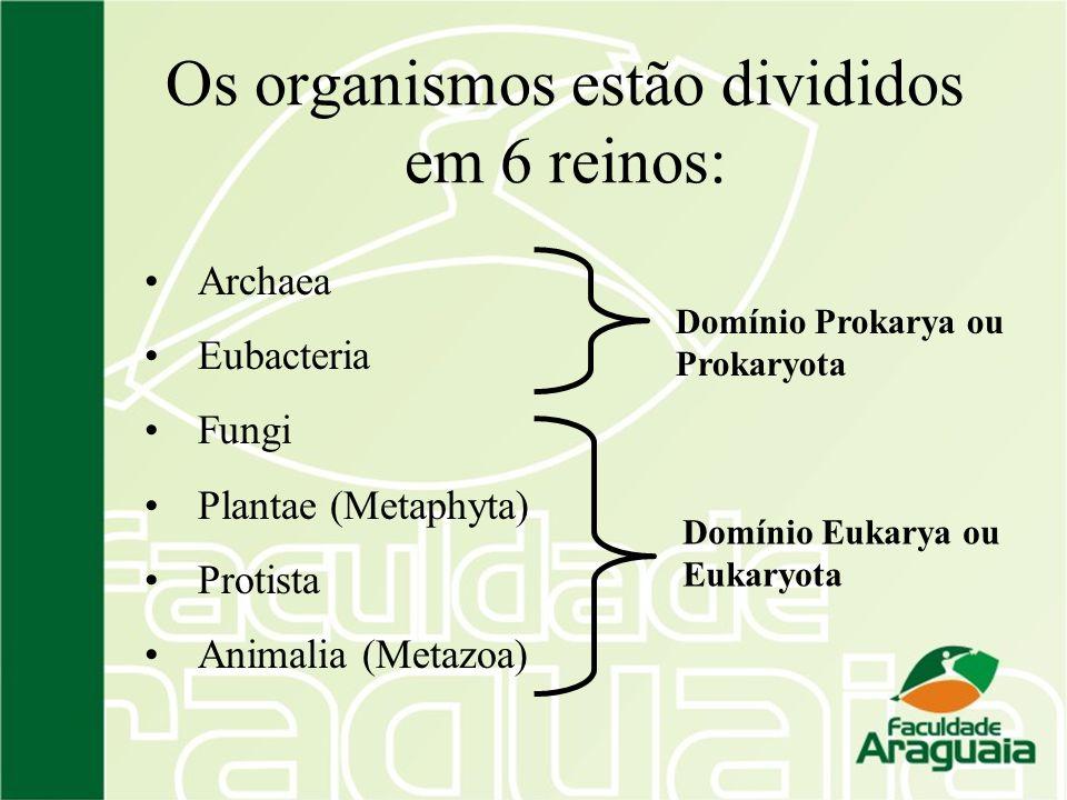 Os organismos estão divididos em 6 reinos: Archaea Eubacteria Fungi Plantae (Metaphyta) Protista Animalia (Metazoa) Domínio Eukarya ou Eukaryota Domín