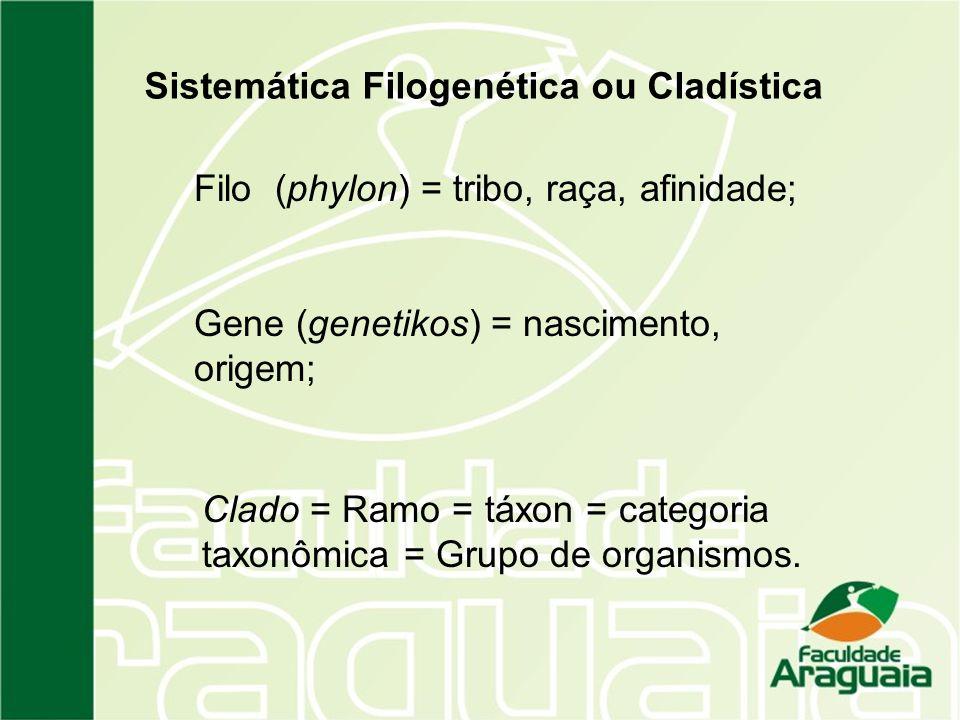 Sistemática Filogenética ou Cladística Filo (phylon) = tribo, raça, afinidade; Gene (genetikos) = nascimento, origem; Clado = Ramo = táxon = categoria