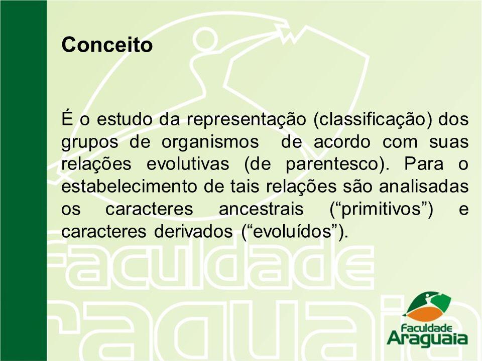 Conceito É o estudo da representação (classificação) dos grupos de organismos de acordo com suas relações evolutivas (de parentesco). Para o estabelec
