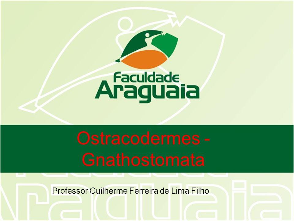 Ostracodermes - Gnathostomata Professor Guilherme Ferreira de Lima Filho