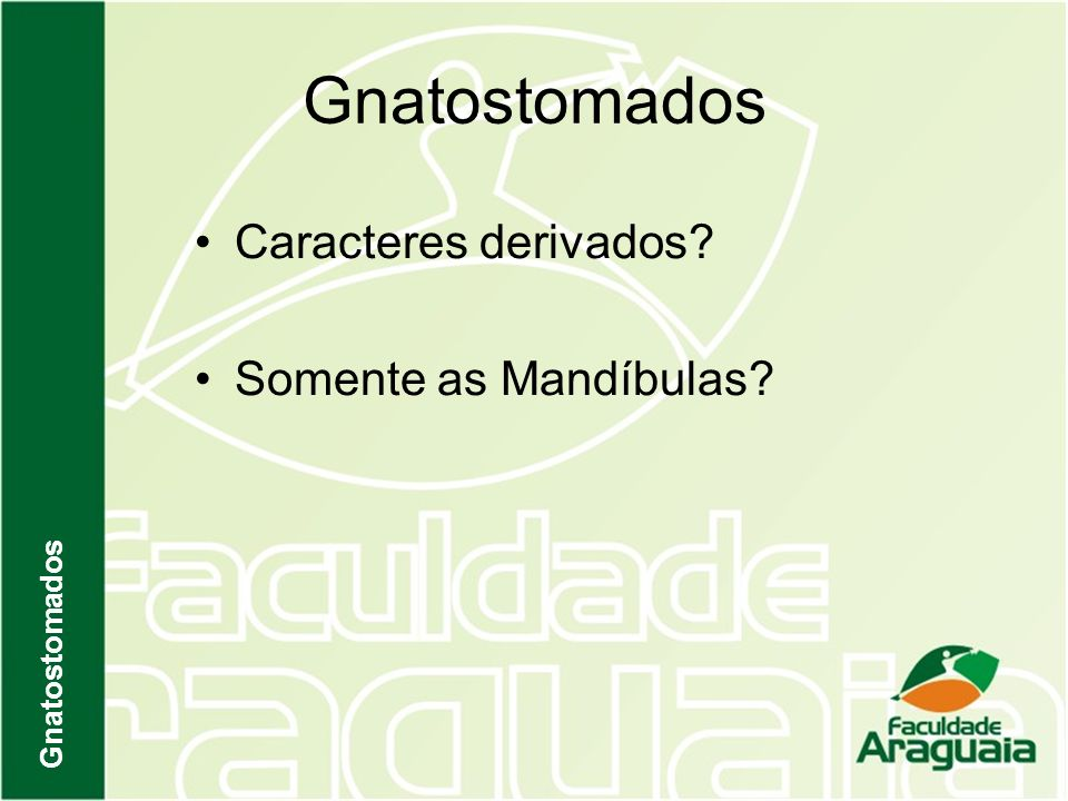 Gnatostomados Caracteres derivados? Somente as Mandíbulas? Gnatostomados
