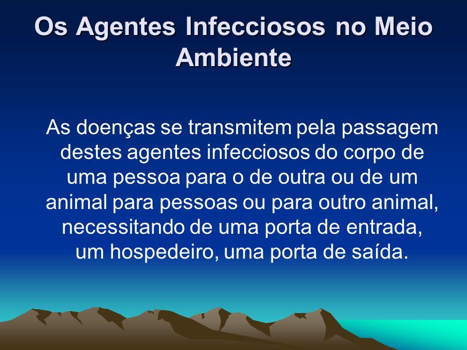 Os Agentes Infecciosos no Meio Ambiente As doenças se transmitem pela passagem destes agentes infecciosos do corpo de uma pessoa para o de outra ou de