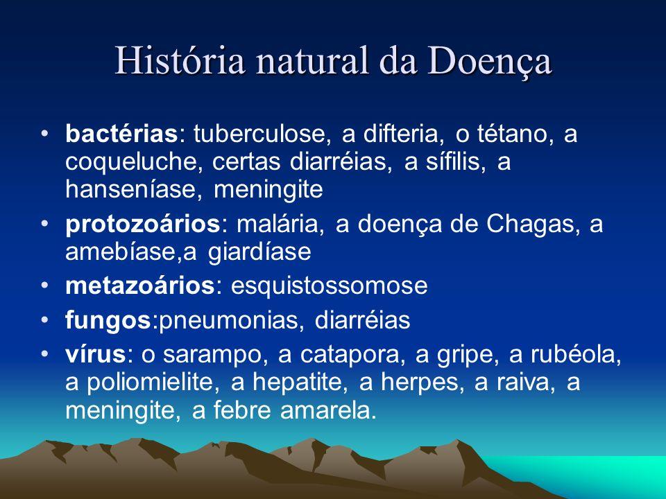 História natural da Doença bactérias: tuberculose, a difteria, o tétano, a coqueluche, certas diarréias, a sífilis, a hanseníase, meningite protozoári