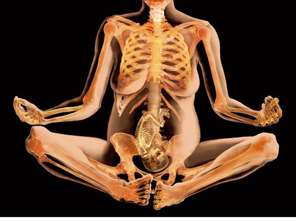 TIPO B: –Maleta de urgência contendo: –Cilindro de oxigênio portátil com válvula ; –Estetoscópio adulto e infantil; –Ambú adulto e infantil; –Cânulas orofaríngeas de tamanhos variados ; –Luvas descartáveis; –Tesoura reta com ponta romba; –Esparadrapo; MATERIAIS E EQUIPAMENTOS : As ambulâncias deverão dispor no mínimo dos seguintes materiais e equipamento