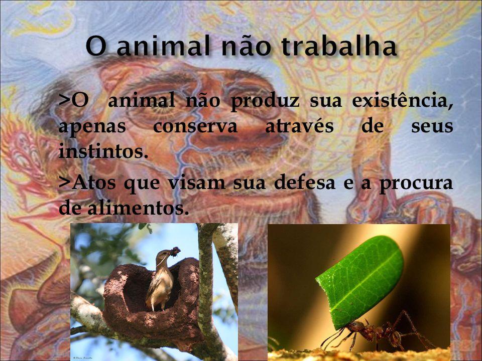 >O animal não produz sua existência, apenas conserva através de seus instintos. >Atos que visam sua defesa e a procura de alimentos.