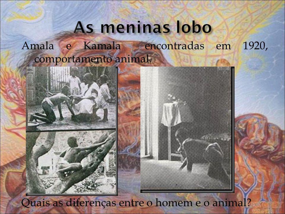 Amala e Kamala encontradas em 1920, comportamento animal. Quais as diferenças entre o homem e o animal?