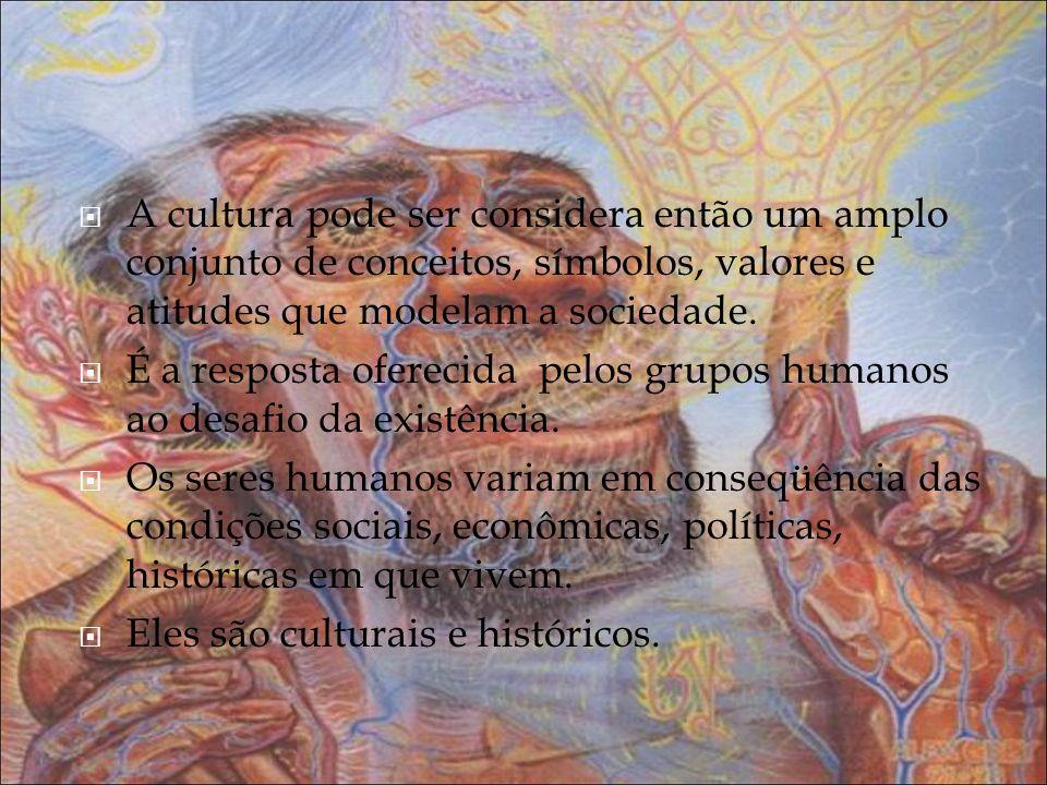 A cultura pode ser considera então um amplo conjunto de conceitos, símbolos, valores e atitudes que modelam a sociedade. É a resposta oferecida pelos