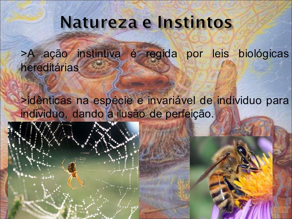 >A ação instintiva é regida por leis biológicas hereditárias >idênticas na espécie e invariável de individuo para indivíduo, dando a ilusão de perfeiç