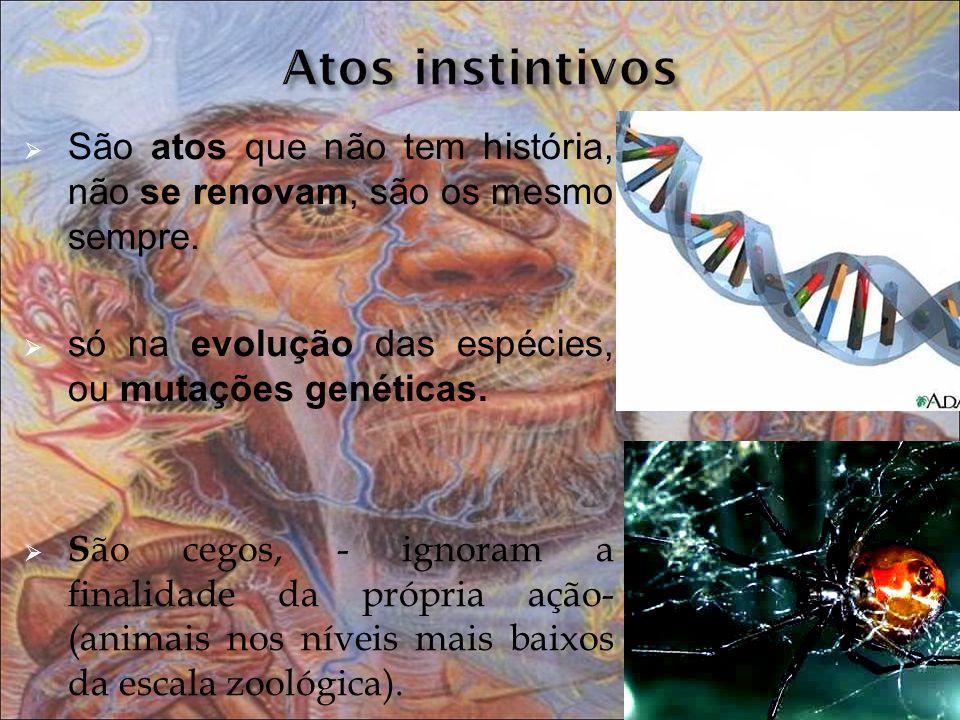 São atos que não tem história, não se renovam, são os mesmo sempre. só na evolução das espécies, ou mutações genéticas. S ão cegos, - ignoram a finali