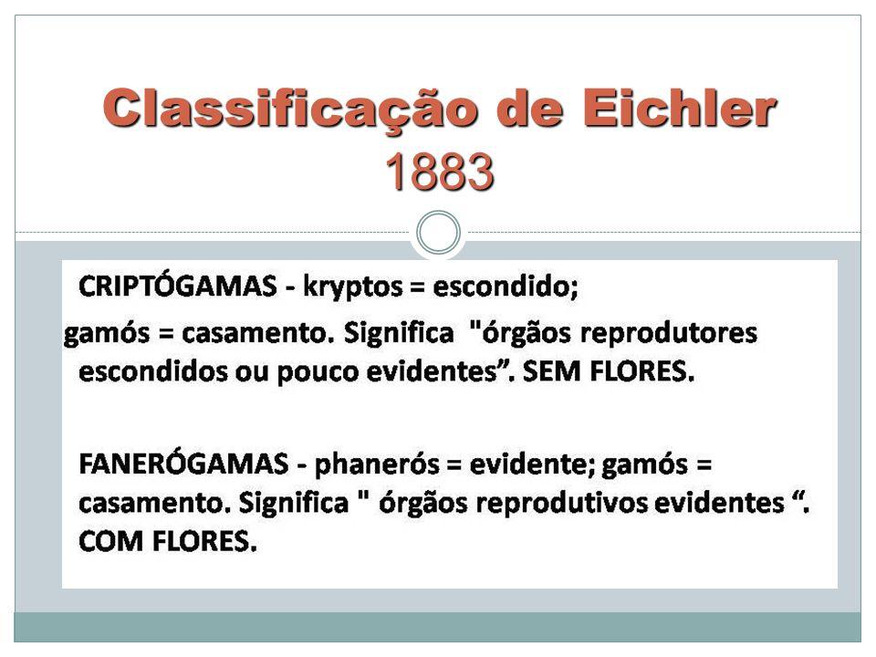 Classificação de Eichler 1883