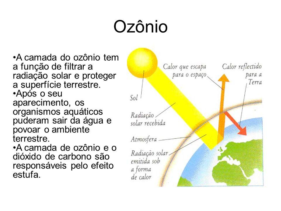 Ozônio A camada do ozônio tem a função de filtrar a radiação solar e proteger a superfície terrestre. Após o seu aparecimento, os organismos aquáticos