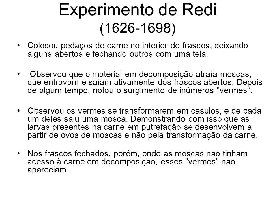 Experimento de Redi (1626-1698) Colocou pedaços de carne no interior de frascos, deixando alguns abertos e fechando outros com uma tela. Observou que