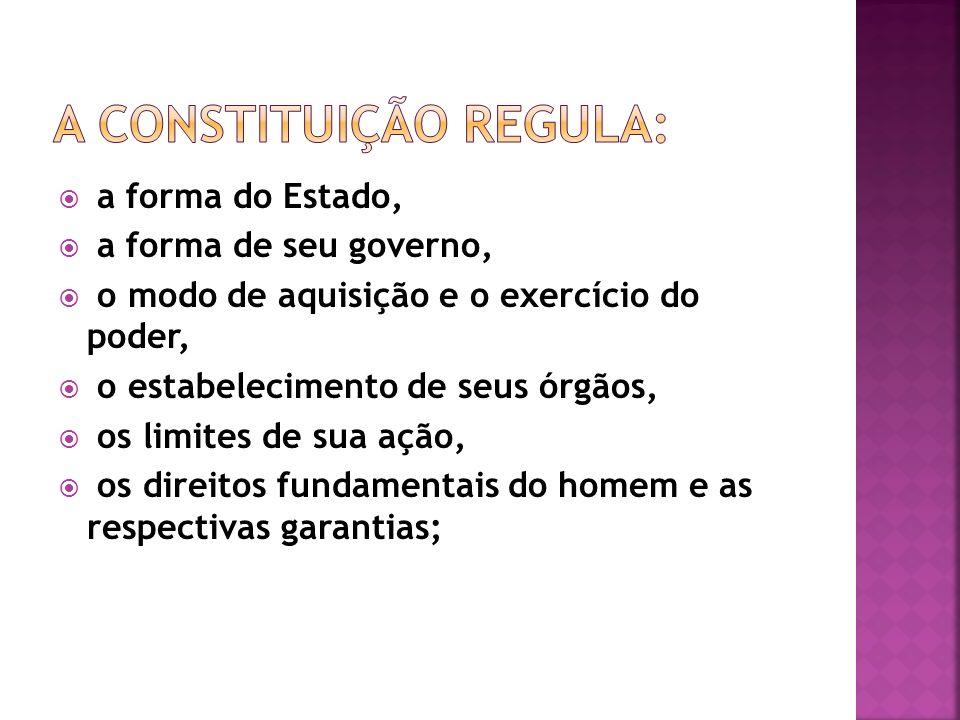 a forma do Estado, a forma de seu governo, o modo de aquisição e o exercício do poder, o estabelecimento de seus órgãos, os limites de sua ação, os di