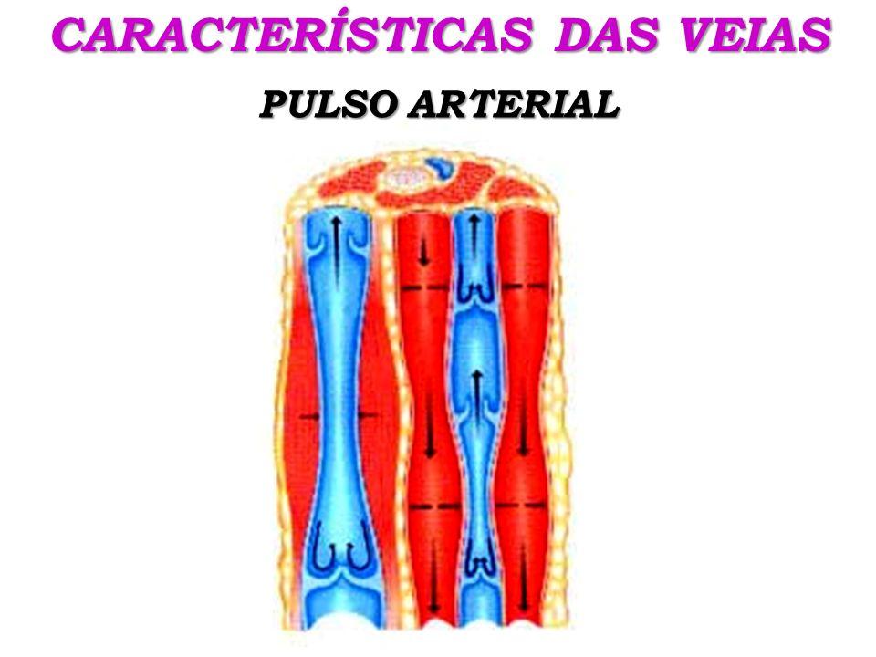 CARACTERÍSTICAS DAS VEIAS PULSO ARTERIAL