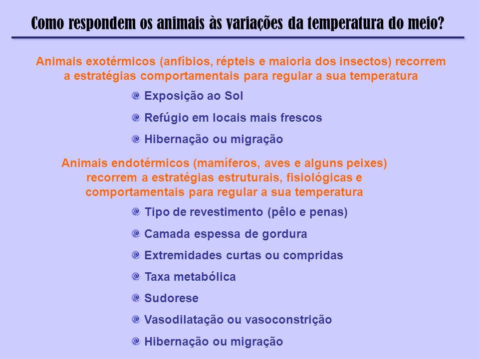Como respondem os animais às variações da temperatura do meio? Animais exotérmicos (anfíbios, répteis e maioria dos insectos) recorrem a estratégias c