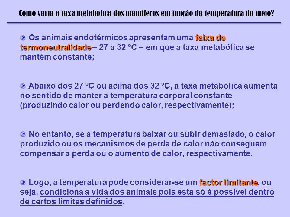 Como varia a taxa metabólica dos mamíferos em função da temperatura do meio? faixa de termoneutralidade Os animais endotérmicos apresentam uma faixa d