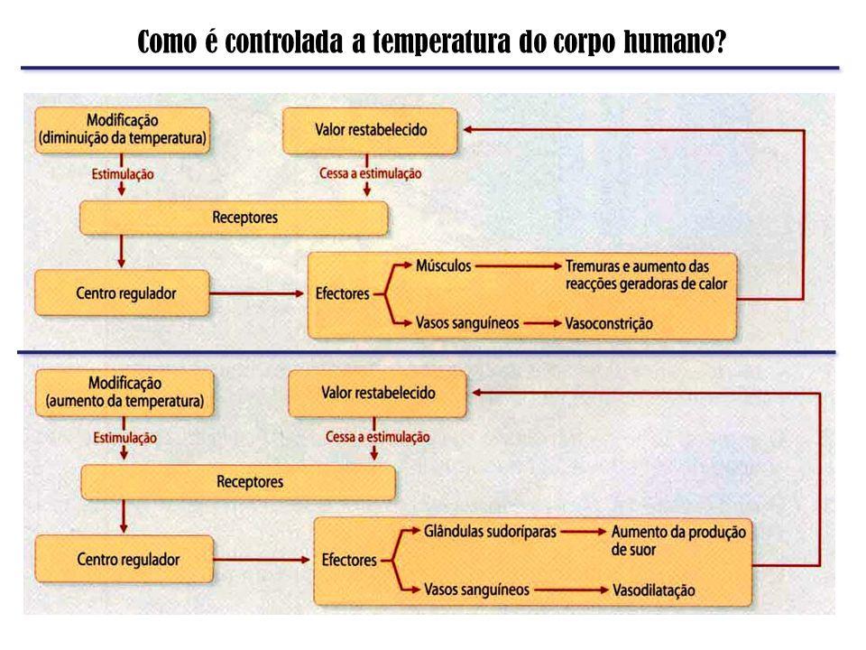 Como é controlada a temperatura do corpo humano?