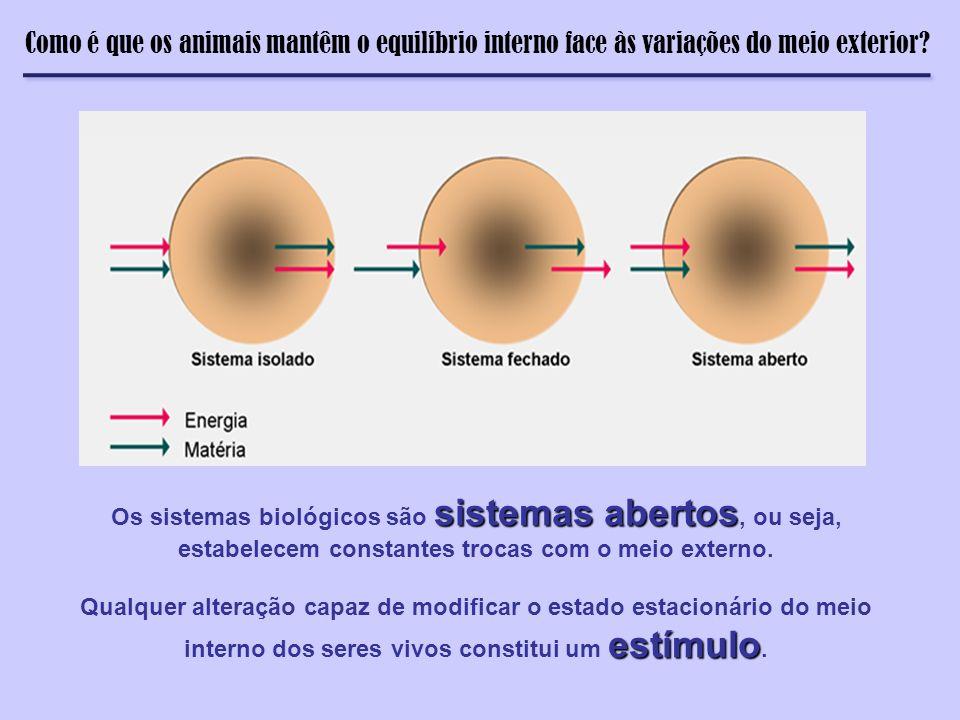 Como é que os animais mantêm o equilíbrio interno face às variações do meio exterior? sistemas abertos Os sistemas biológicos são sistemas abertos, ou