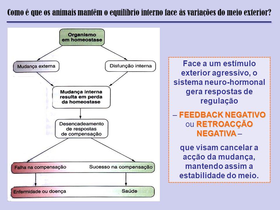 Face a um estímulo exterior agressivo, o sistema neuro-hormonal gera respostas de regulação FEEDBACK NEGATIVO RETROACÇÃO NEGATIVA – FEEDBACK NEGATIVO