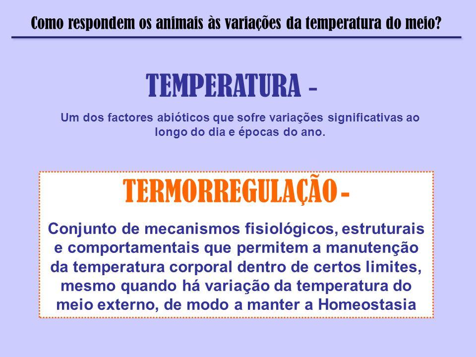 Como respondem os animais às variações da temperatura do meio? TEMPERATURA - Um dos factores abióticos que sofre variações significativas ao longo do