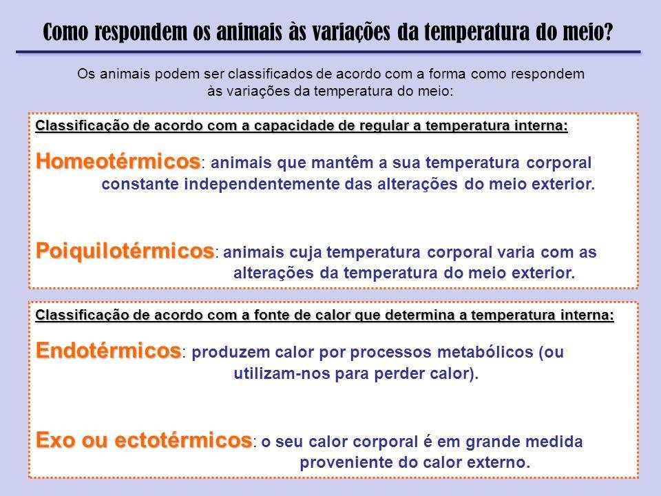 Como respondem os animais às variações da temperatura do meio? Os animais podem ser classificados de acordo com a forma como respondem às variações da