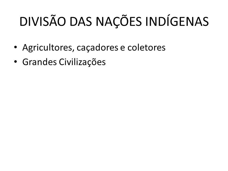 DIVISÃO DAS NAÇÕES INDÍGENAS Agricultores, caçadores e coletores Grandes Civilizações