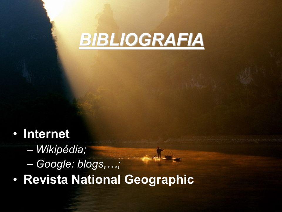 BIBLIOGRAFIA Internet –Wikipédia; –Google: blogs,…; Revista National Geographic