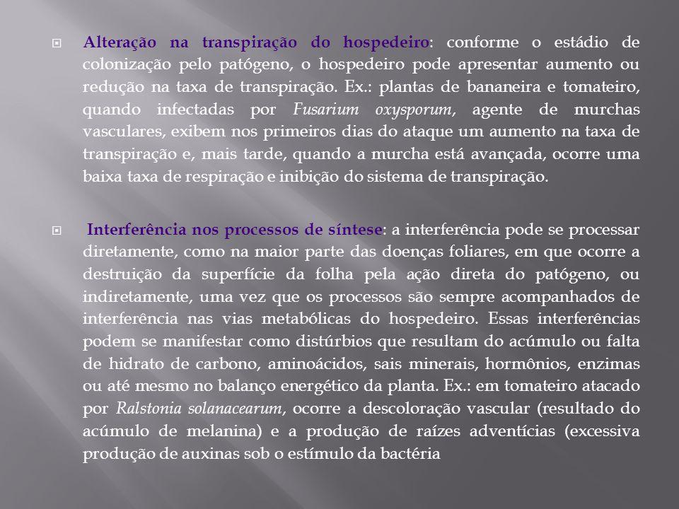 Alteração na transpiração do hospedeiro : conforme o estádio de colonização pelo patógeno, o hospedeiro pode apresentar aumento ou redução na taxa de