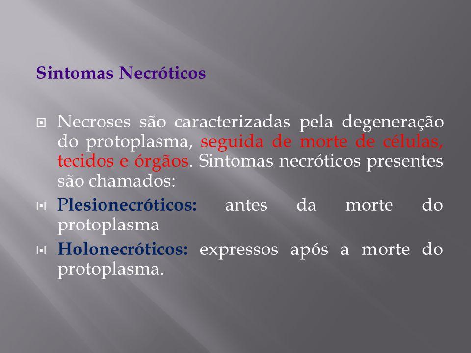 Sintomas Necróticos Necroses são caracterizadas pela degeneração do protoplasma, seguida de morte de células, tecidos e órgãos. Sintomas necróticos pr
