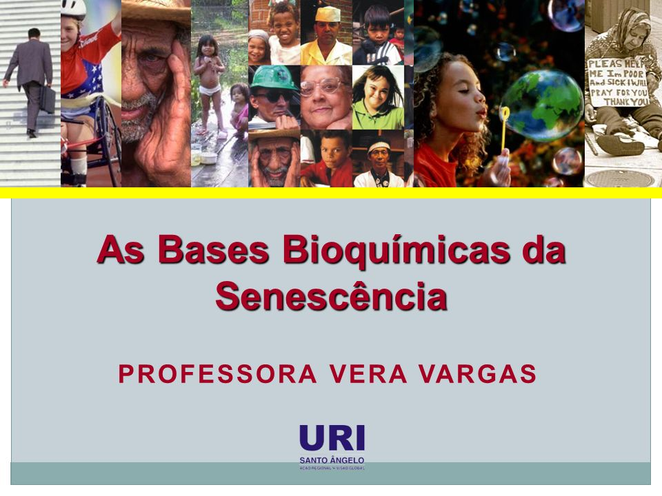 Bases Bioquímicas da Senescência EMENTA Introdução à biogerontologia Epidemiologia do envelhecimento Características gerais do envelhecimento humano Teorias do envelhecimento Doenças crônicas degenerativas
