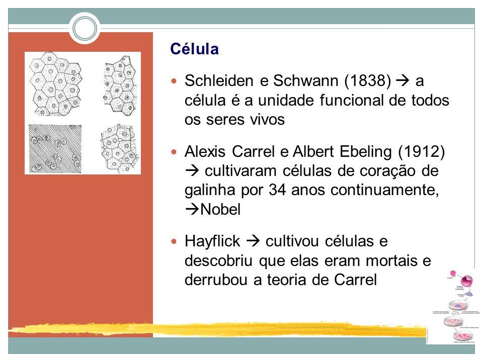 Célula Schleiden e Schwann (1838) a célula é a unidade funcional de todos os seres vivos Alexis Carrel e Albert Ebeling (1912) cultivaram células de c