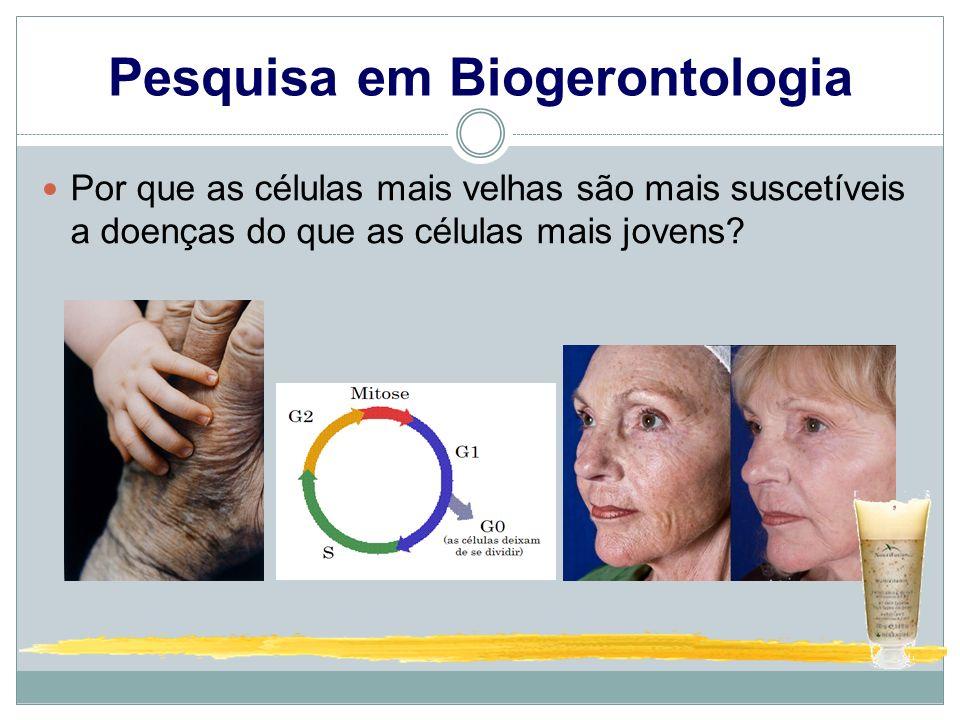Pesquisa em Biogerontologia Por que as células mais velhas são mais suscetíveis a doenças do que as células mais jovens?