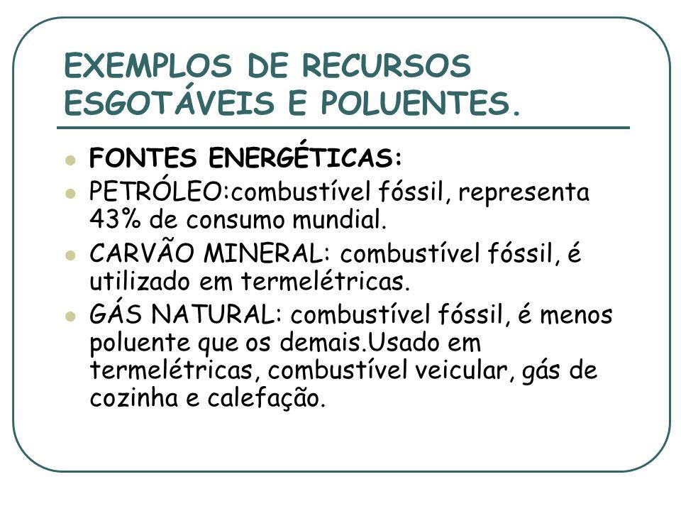 RELAÇÃO HOMEM X NATUREZA Utilizamos muitos recursos naturais,desmedidamente, em nosso benefício. Dependemos da natureza pra nos alimentar, aquecer, en