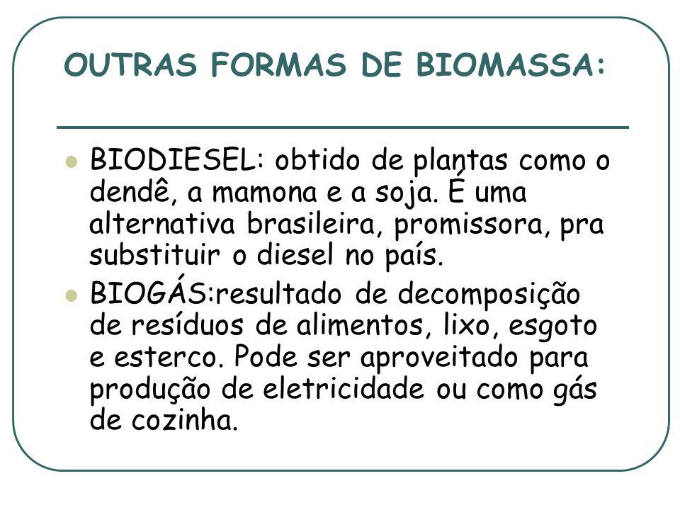 FONTES ALTERNATIVAS DE ENERGIA. BIOMASSA: é gerada da queima de material orgânico. É renovável e barata. Exemplos: lenha, bagaço de cana e resíduos de