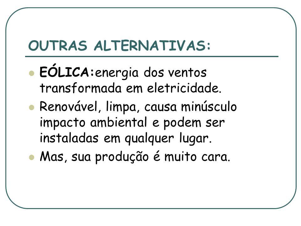 OUTRAS FORMAS DE BIOMASSA: BIODIESEL: obtido de plantas como o dendê, a mamona e a soja. É uma alternativa brasileira, promissora, pra substituir o di