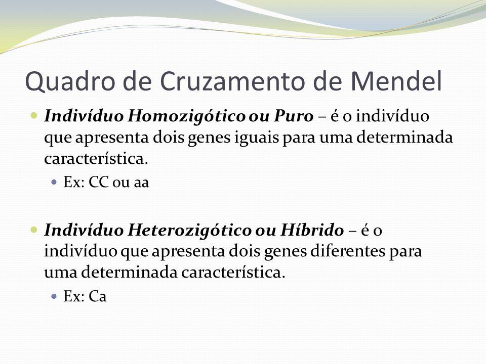 Quadro de Cruzamento de Mendel Indivíduo Homozigótico ou Puro – é o indivíduo que apresenta dois genes iguais para uma determinada característica. Ex: