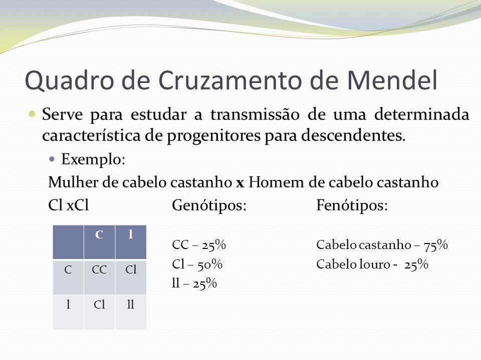 Quadro de Cruzamento de Mendel Serve para estudar a transmissão de uma determinada característica de progenitores para descendentes. Exemplo: Mulher d