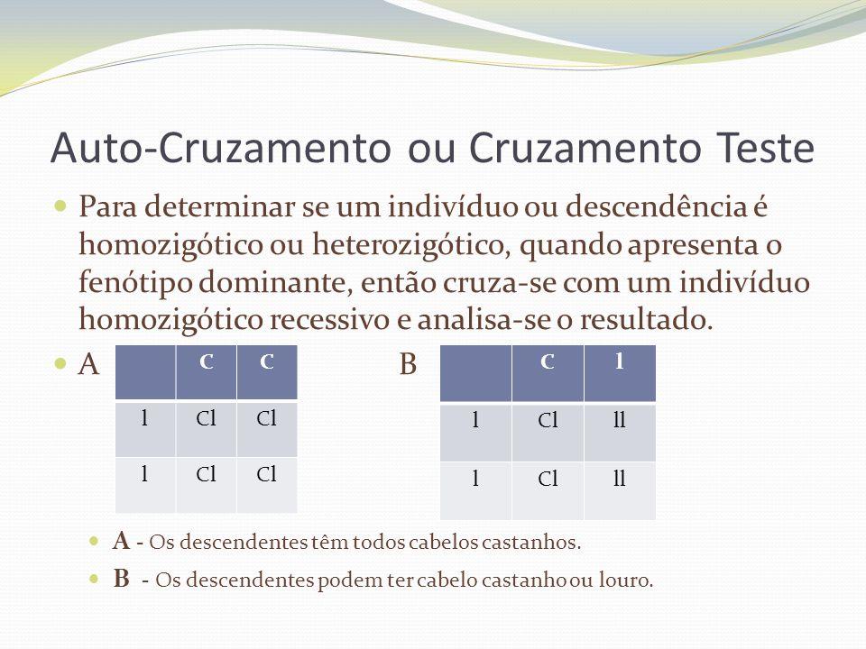 Auto-Cruzamento ou Cruzamento Teste Para determinar se um indivíduo ou descendência é homozigótico ou heterozigótico, quando apresenta o fenótipo domi