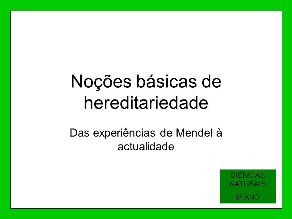 Noções básicas de hereditariedade Das experiências de Mendel à actualidade CIÊNCIAS NATURAIS 9º ANO