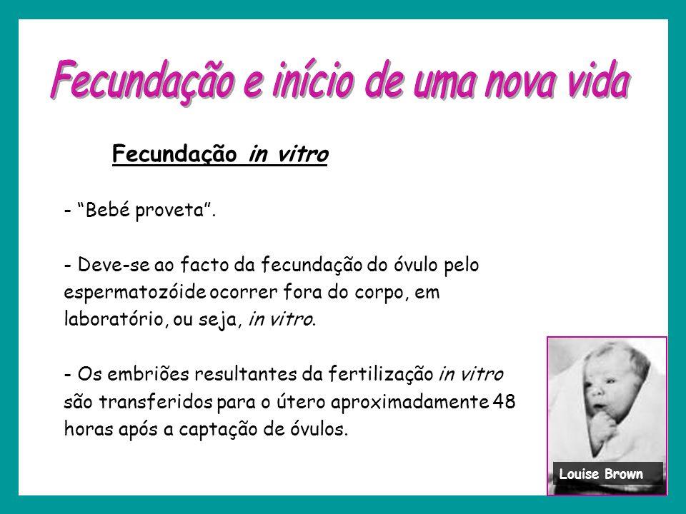 Fecundação in vitro - Bebé proveta. - Deve-se ao facto da fecundação do óvulo pelo espermatozóide ocorrer fora do corpo, em laboratório, ou seja, in v