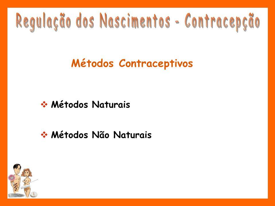 Métodos Contraceptivos Métodos Naturais Métodos Não Naturais