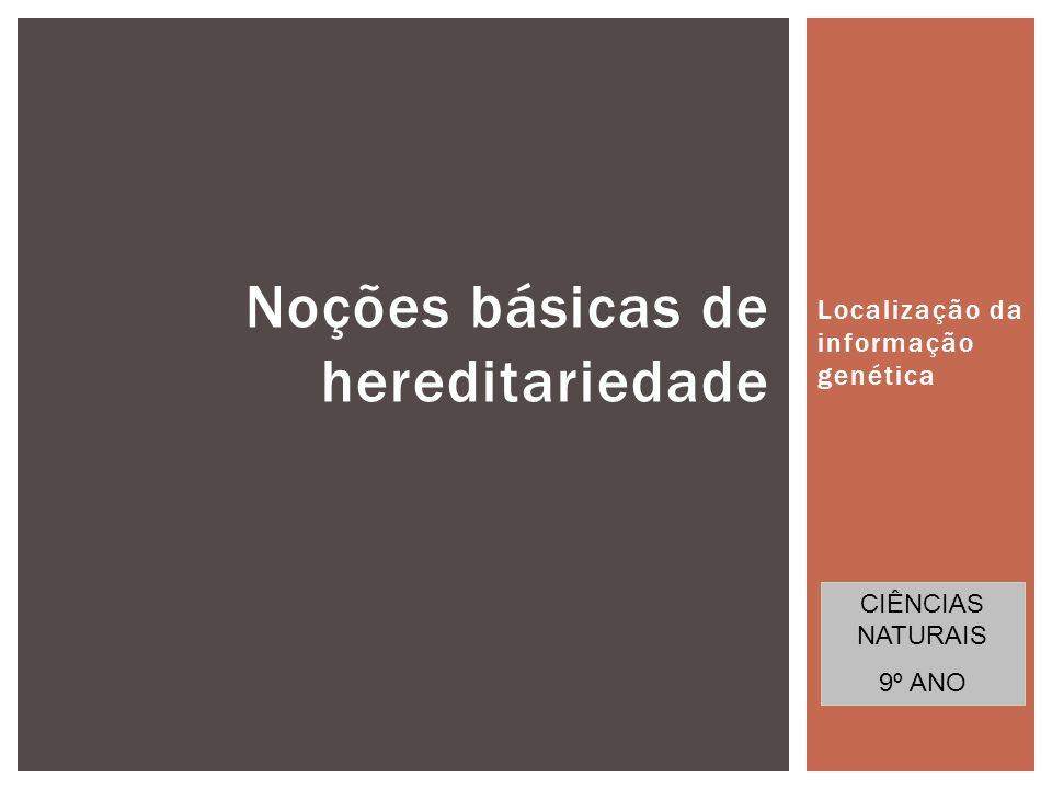 Localização da informação genética 1 Noções básicas de hereditariedade CIÊNCIAS NATURAIS 9º ANO