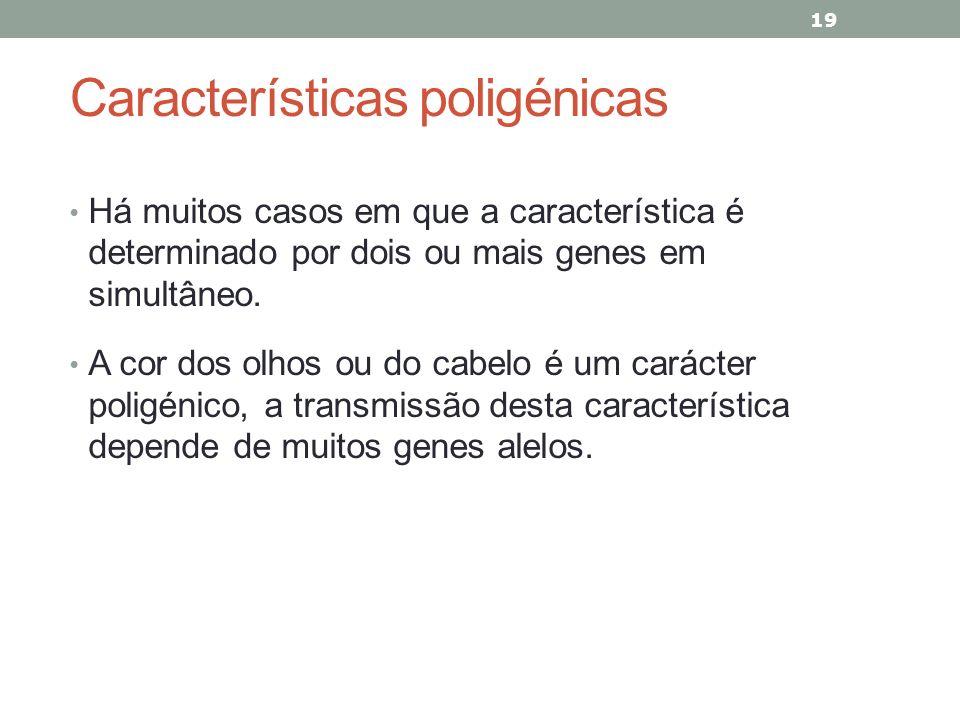 Características poligénicas Há muitos casos em que a característica é determinado por dois ou mais genes em simultâneo. A cor dos olhos ou do cabelo é