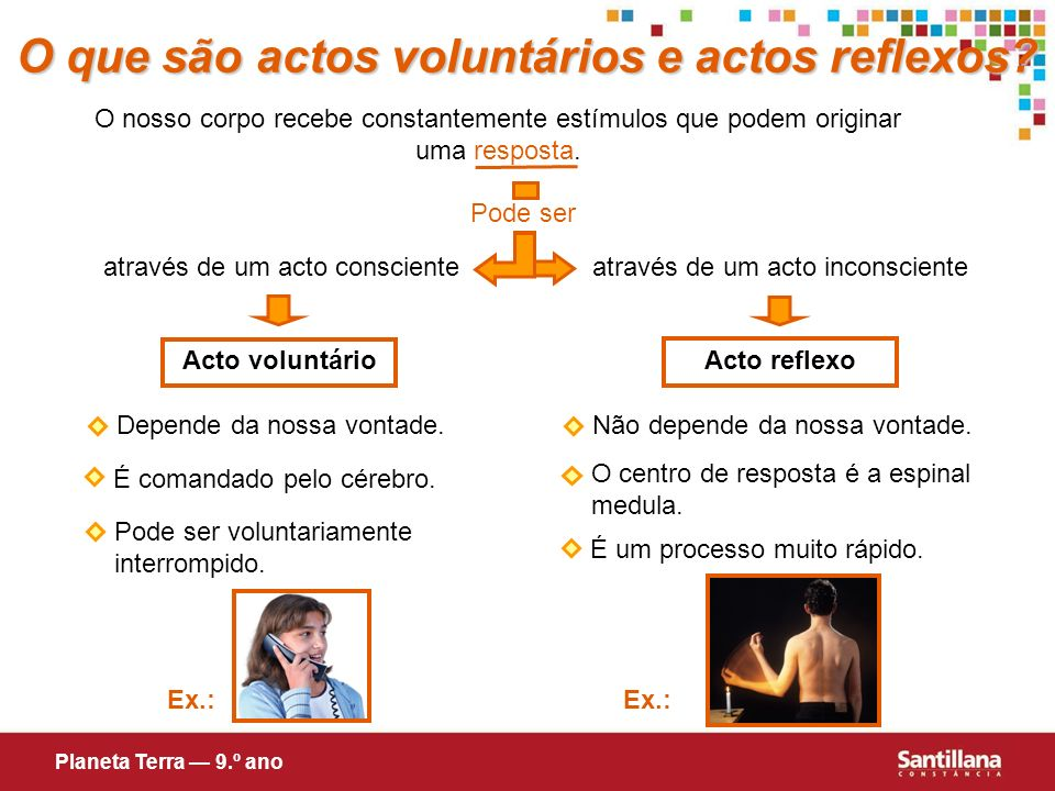 O que são actos voluntários e actos reflexos? O nosso corpo recebe constantemente estímulos que podem originar uma resposta. através de um acto incons
