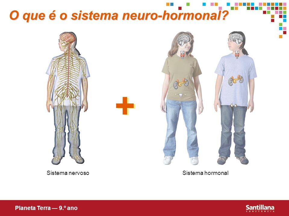 O que é o sistema neuro-hormonal? + + Sistema nervosoSistema hormonal Planeta Terra 9.º ano