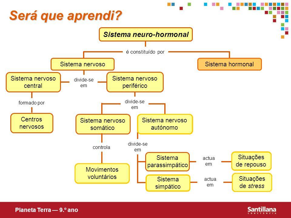 Sistema neuro-hormonal é constituído por Sistema hormonal Sistema nervoso central divide-se em Sistema nervoso Será que aprendi? formado por Centros n