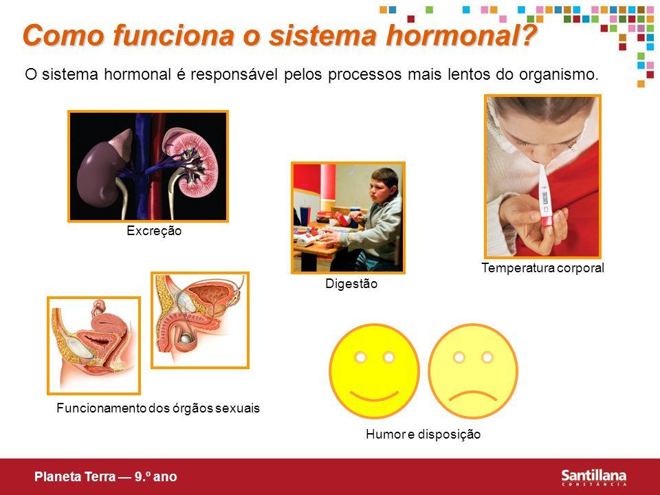 Como funciona o sistema hormonal? O sistema hormonal é responsável pelos processos mais lentos do organismo. Funcionamento dos órgãos sexuais Digestão