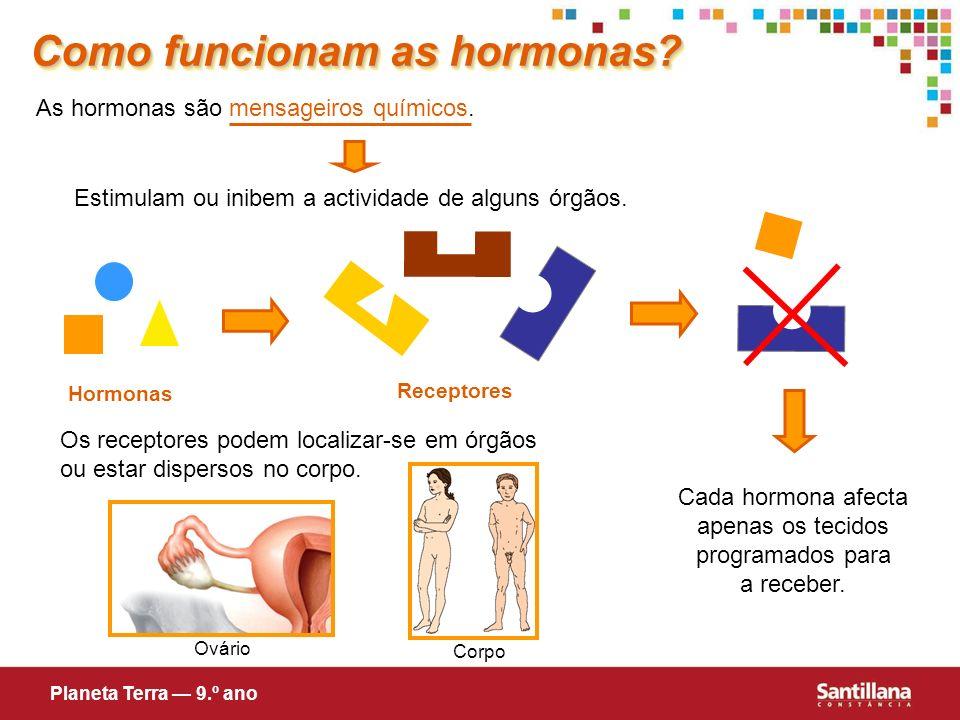 Hormonas Receptores Como funcionam as hormonas? As hormonas são mensageiros químicos. Estimulam ou inibem a actividade de alguns órgãos. Cada hormona
