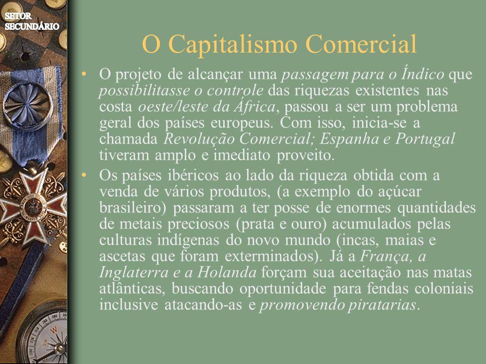 O Capitalismo Comercial O projeto de alcançar uma passagem para o Índico que possibilitasse o controle das riquezas existentes nas costa oeste/leste da África, passou a ser um problema geral dos países europeus.